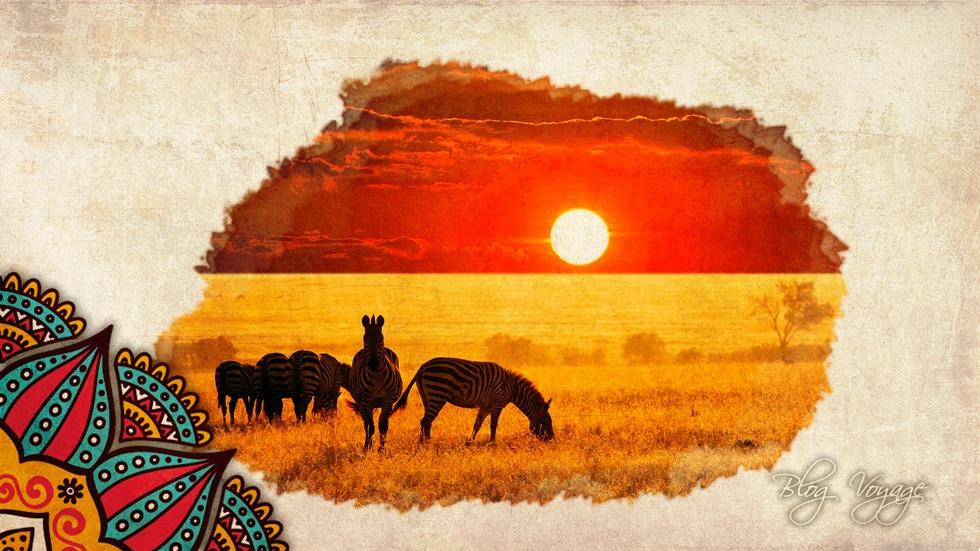 Поехать на сафари в Кении