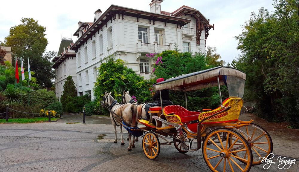 Отдых на Принцевых островах, Стамбул